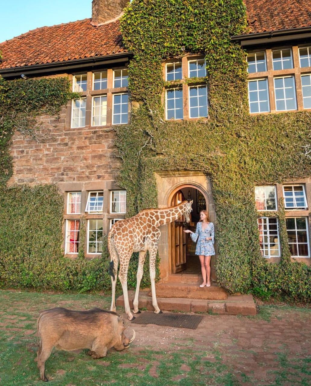 2018 Travel Bucket List: Kenya
